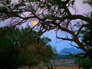 Full moon at Klein Pella Orange river tour